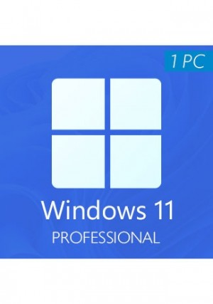 Windows 11 Professional CD-KEY